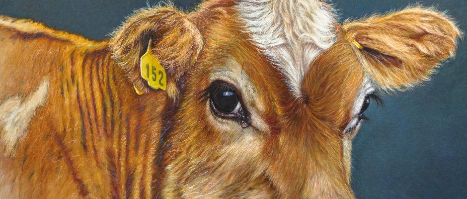 Sozis für Tiere lehnt GroKo-Stallumbau ab!