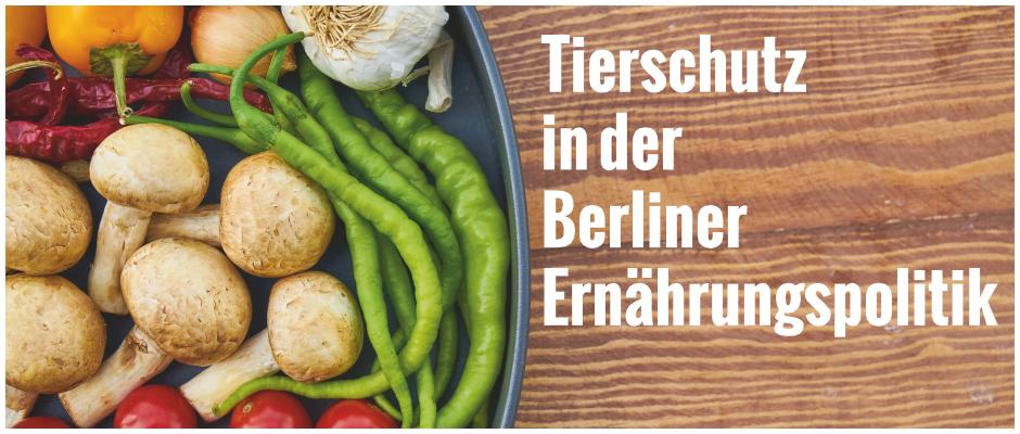 Tierschutz in der Berliner Ernährungspolitik