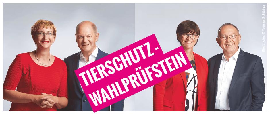 Tierschutz-Wahlprüfstein: Klara/Olaf vs. Saskia/Norbert