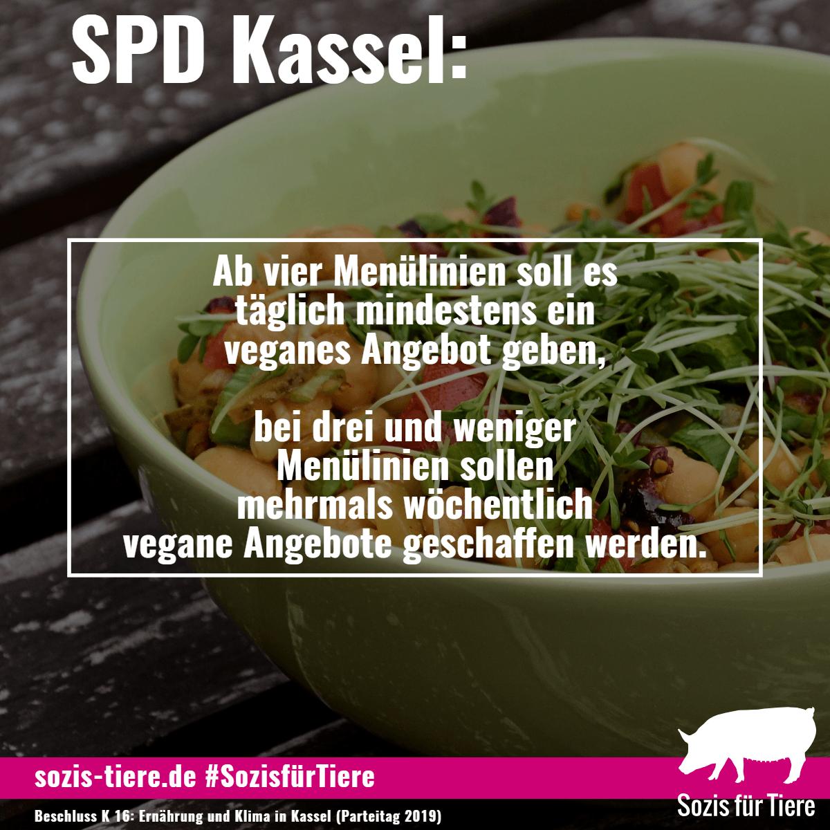 SPD Kassel: Ab vier Menülinien soll es täglich mindestens ein veganes Angebot geben, bei drei und weniger Menülinien sollen mehrmals wöchentlich vegane Angebote geschaffen werden.