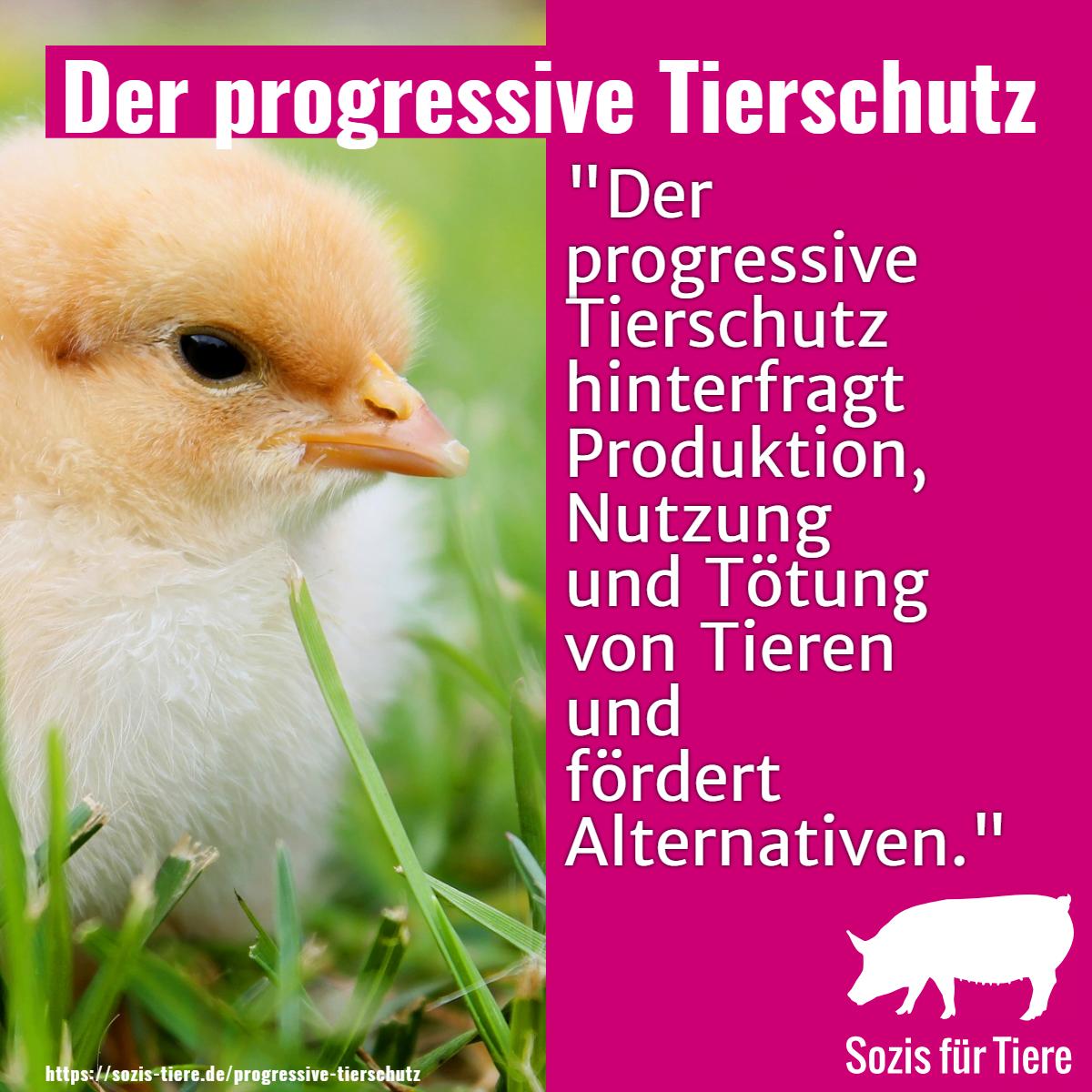 Der progressive Tierschutz: Der progressive Tierschutz hinterfragt Produktion, Nutzung und Tötung von Tieren und fördert Alternativen.