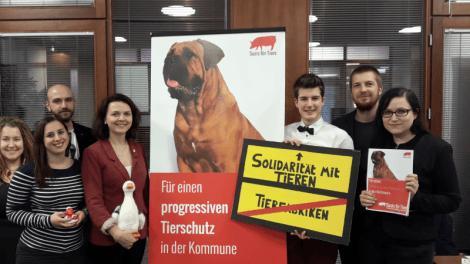 Sozis für Tiere mit einem RollUp - Für einen progressiven Tierschutz in der Kommune